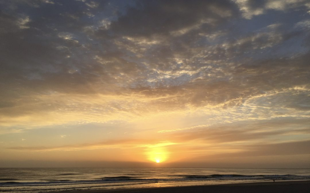 Beauty of Beginnings – November 27th