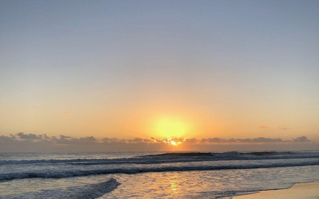 Beauty of Beginnings – January 2nd Hard Training