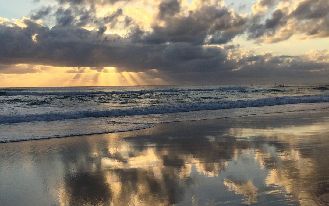 Beauty of Beginnings-December 14th-Optimism